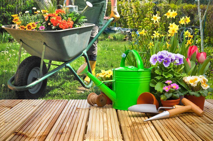 herramientas para cuidar tu jardín que vas a necesitar si o si